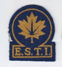 ESTI arm badge yellow flocked on blue felt. Author's collection.
