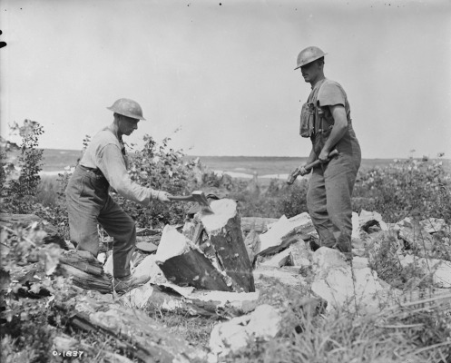 Canadian pioneers splitting logs for use in trenches. August, 1917.