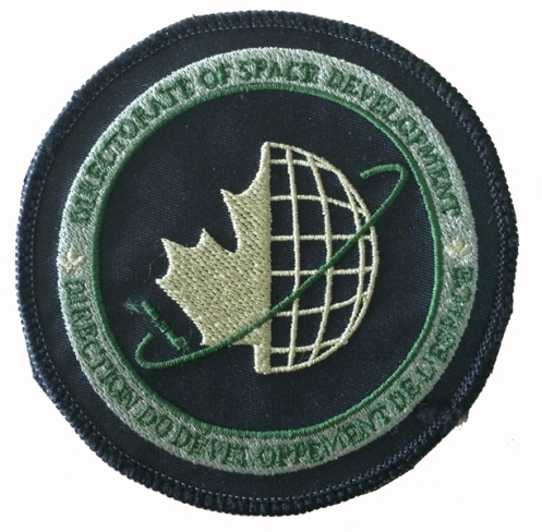 Subdued pattern of the D Space D patch as worn on the right sleeve. Author's collection