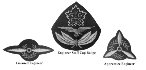 Insignia worn by the Engineering staff of No. 9 EFTS at St. Catharine. MilArt photo archive