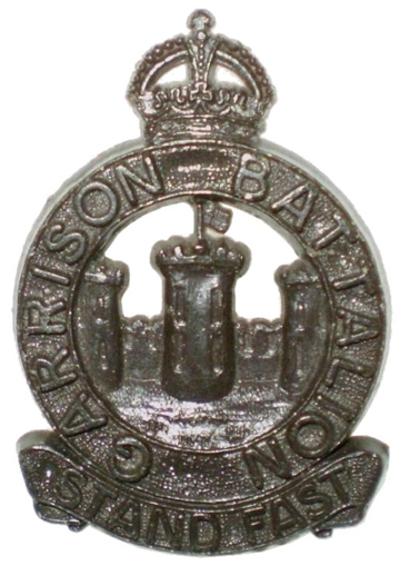 An example of a production badge. The thickness of the badge, required to prevent excessive wastage, was disliked by the battalion.